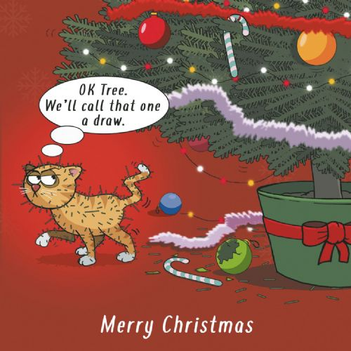 CANX41 – Cat vs Christmas Tree Funny Cat Card